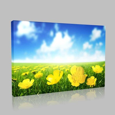 Çiçekler Ve Gökyüzü Kanvas Tablo