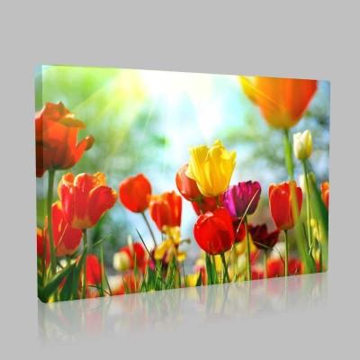 Bahar İşıltısı Kanvas Tablo
