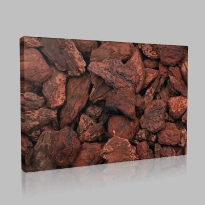 Brownie Kanvas Tablo