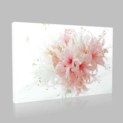 Candy Pink Lilium Kanvas Tablo