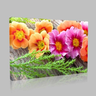 Doğadan Çiçekler Kanvas Tablo