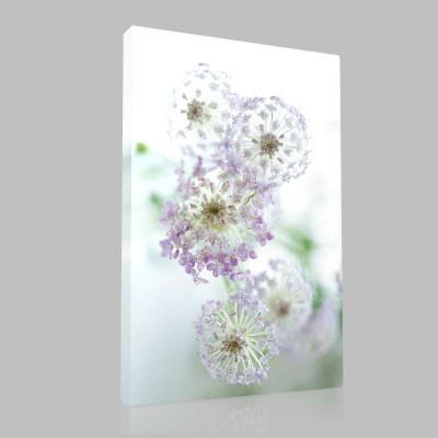 Hezaren Çiçeği Kanvas Tablo