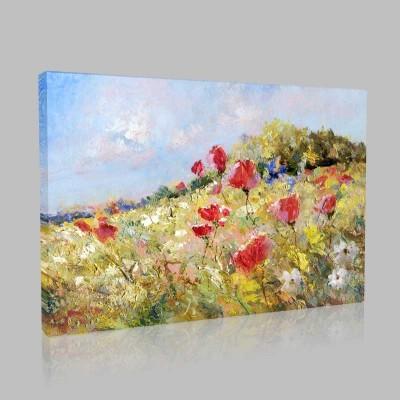 Kırda Çiçekler Kanvas Tablo