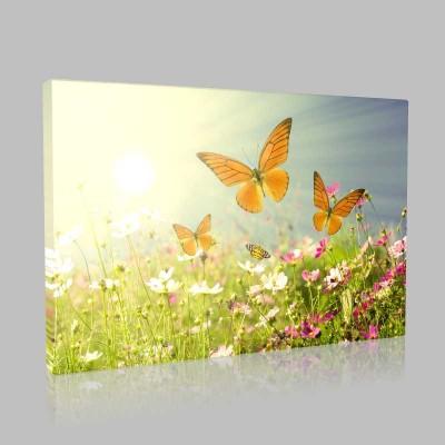 Kelebek Ve Çiçekler Kanvas Tablo