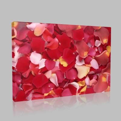 Rose Flakes Kanvas Tablo