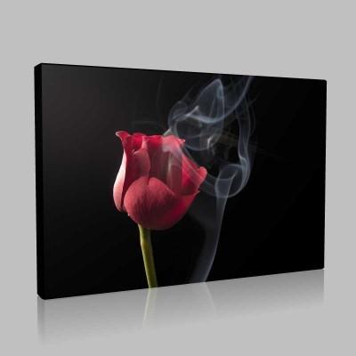 Smoky Red Rose 1 Kanvas Tablo
