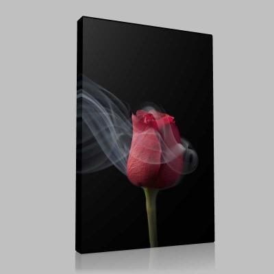 Smoky Red Rose 2 Kanvas Tablo