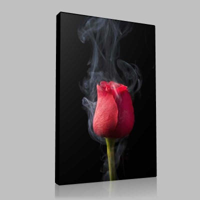 Smoky Red Rose 3 Kanvas Tablo
