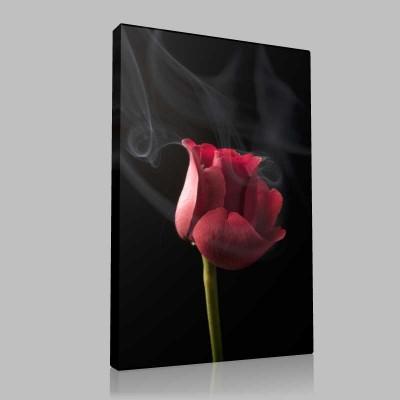 Smoky Red Rose 4 Kanvas Tablo