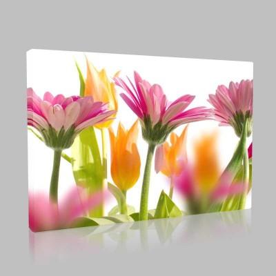 Turuncu Ve Pembe Çiçekler Kanvas Tablo