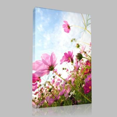 Vahşi Çiçekler Kanvas Tablo