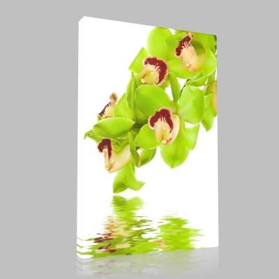 Yeşil Çiçek Dünyası Kanvas Tablo