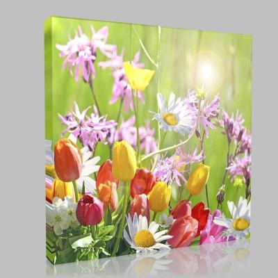 Çiçek Esintisi Kanvas Tablo