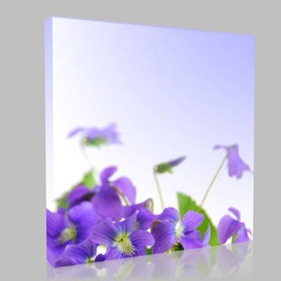 Bahardaki Mor Çiçekler Kanvas Tablo
