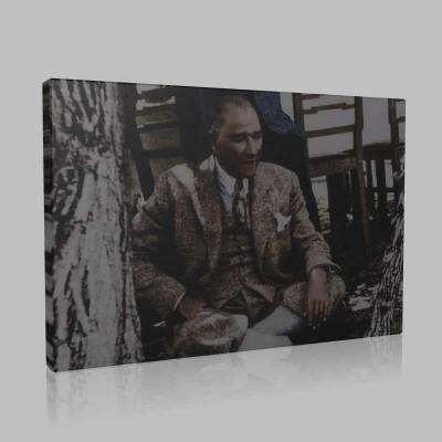 Renkli Atatürk Resimleri 412 Kanvas Tablo
