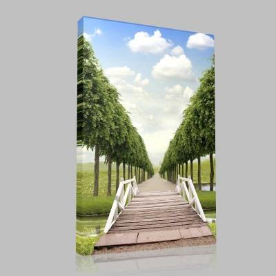Ağaçlı Yol Kanvas Tablo