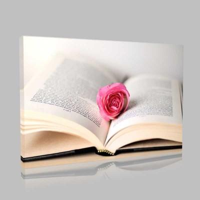 Kitap Ve Gül Kanvas Tablo