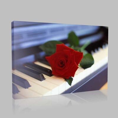 Piyano Ve Gül Kanvas Tablo