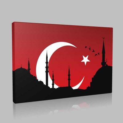 İstanbul İlustrasyon Kanvas Tablo