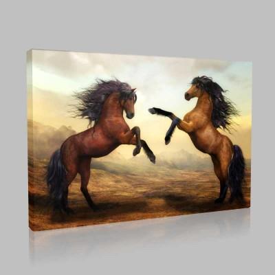 Şahlanmış İki At Kanvas Tablo