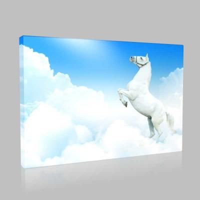 Bulutların İçindeki At Kanvas Tablo