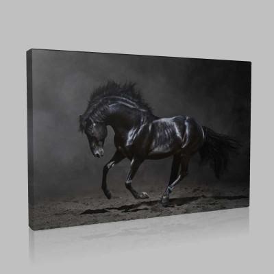 Dörtnala Siyah At Kanvas Tablo