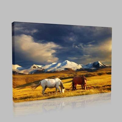Dağ Manzarası Ve İki At Kanvas Tablo
