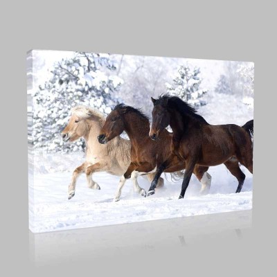 Karda Koşan Atlar Kanvas Tablo