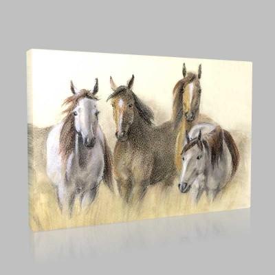 Pastel Çizim Atlar Kanvas Tablo