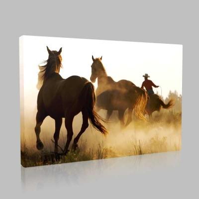 Vahşi Batı Atları Kanvas Tablo