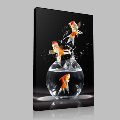 Akvaryumdan Altın Balıklar Kanvas Tablo