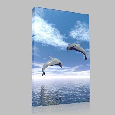 Dolphins At Play2 Kanvas Tablo