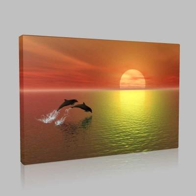 Dolphins At Play3 Kanvas Tablo