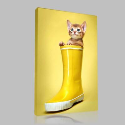 Sarı Çizmeli Kedi Kanvas Tablo