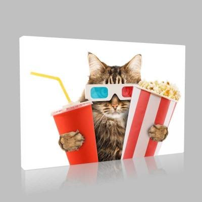 Sinemacı Kedi Kanvas Tablo