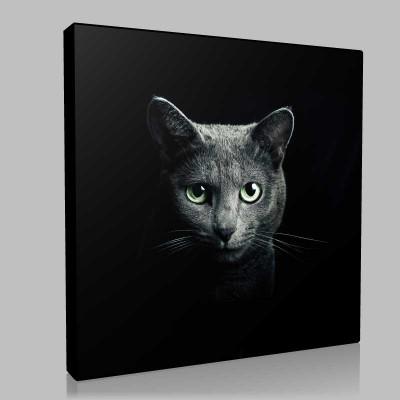 Kara Kedi Kanvas Tablo