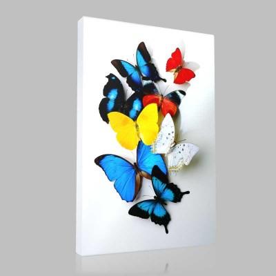 Renkli Küçük Kelebekler Kanvas Tablo