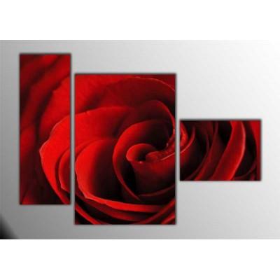 Kırmızı Gül Parçalı Tablo 120X85Cm