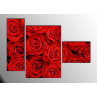Kırmızı Güller Parçalı Tablo 120X85Cm