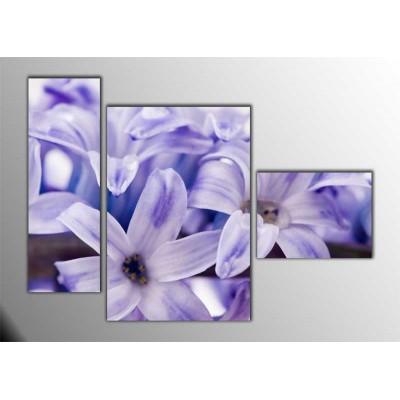 Lila Lilyum Yakın Çekim Parçalı Tablo 120X85Cm