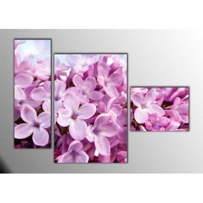 Pure Pink Parçalı Tablo 120X85Cm