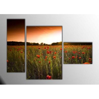 Valley Of Poppy Parçalı Tablo 120X85Cm