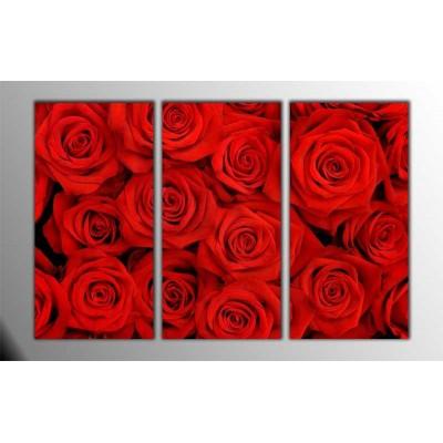 Kırmızı Güller Parçalı Tablo 120X80Cm