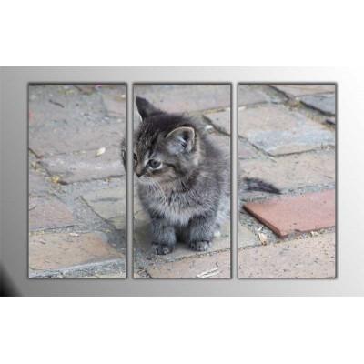 Kediler Parçalı Tablo 120X80Cm