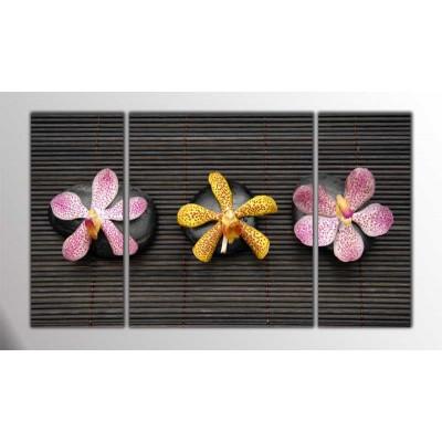 Üç Taş Ve Çiçek Parçalı Tablo 120X70Cm