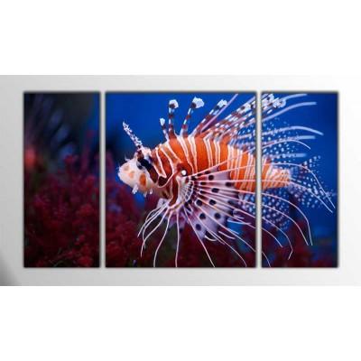 Aslan Balığı Parçalı Tablo 120X70Cm