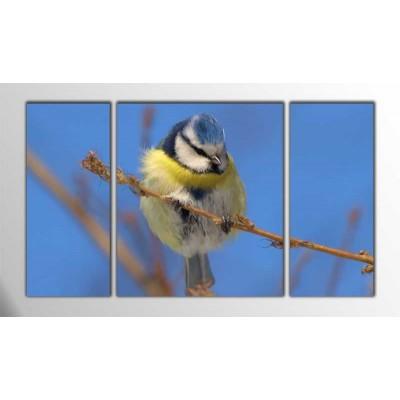 Büyük Baştankara Kuşu Parçalı Tablo 120X70Cm