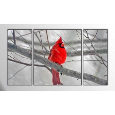 Erkek Kardinal Kuşu Parçalı Tablo 120X70Cm