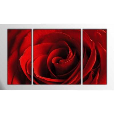 Kırmızı Gül Parçalı Tablo 120X70Cm