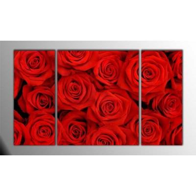 Kırmızı Güller Parçalı Tablo 120X70Cm